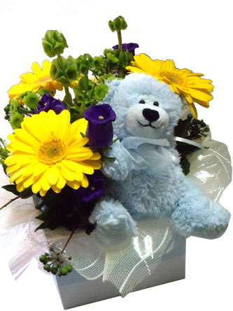 New Baby Boy Flowers and Gift