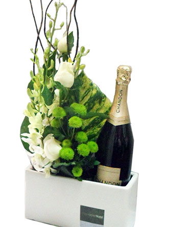 Classical blooms with a bottle of bubbles