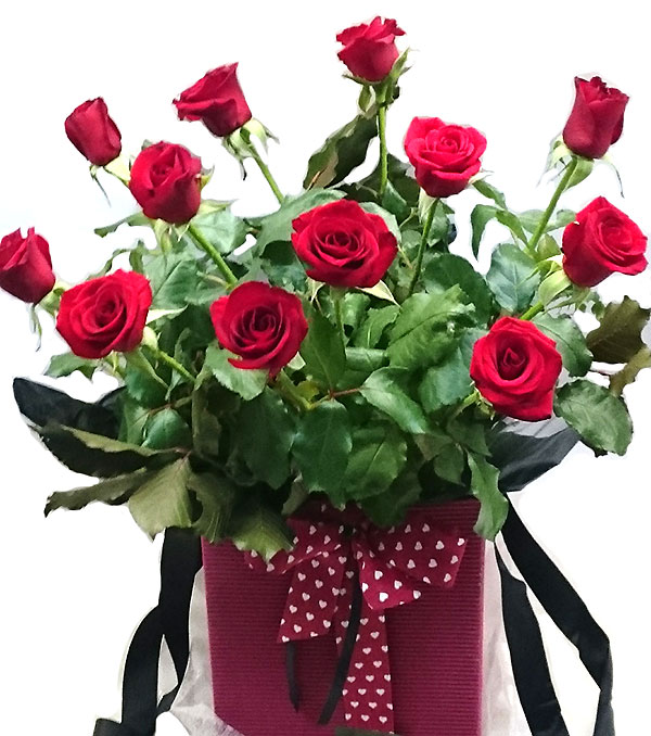 Mont Albert Florist Valentines Day Roses