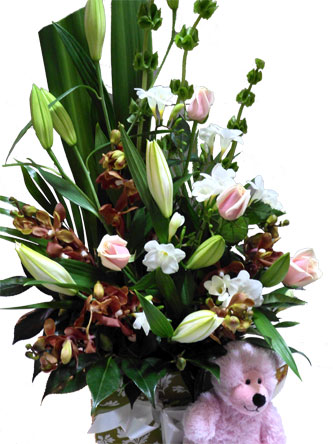 Flower Gift for New Born Baby Gif