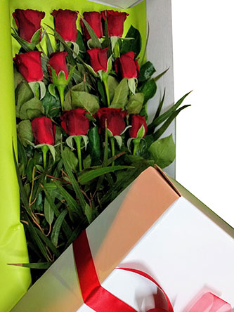 Long box with 12 red roses